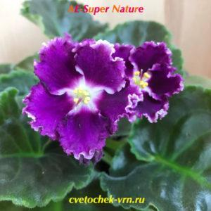 АE-Super Nature (Е.Архипов)