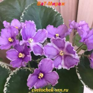 ВаТ-Мираж (Т.Валькова)