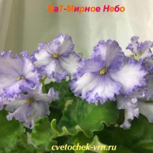 ВаТ-Мирное Небо (Т.Валькова)