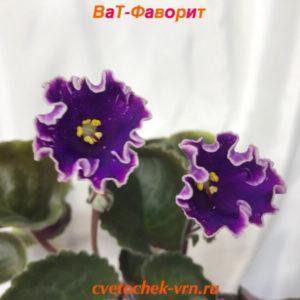 ВаТ-Фаворит (Т.Валькова)