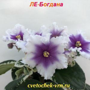 ЛЕ-Богдана
