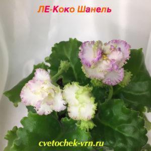 ЛЕ-Коко Шанель