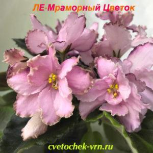ЛЕ-Мраморный Цветок