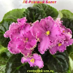 ЛЕ-Розовый Балет