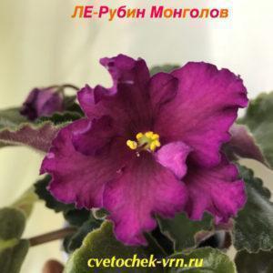 ЛЕ-Рубин Монголов