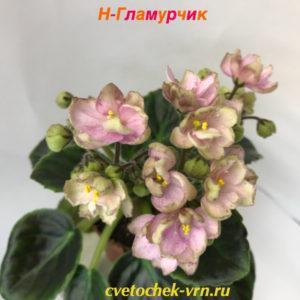 Н-Гламурчик (Н.Бердникова)