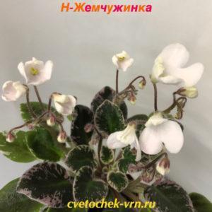Н-Жемчужинка (Н. Бердникова)