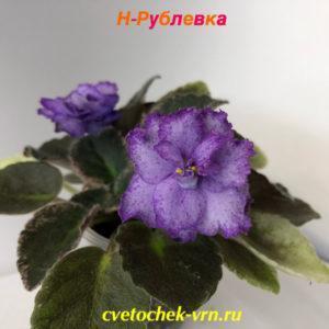 Н-Рублевка (Н.Бердникова)