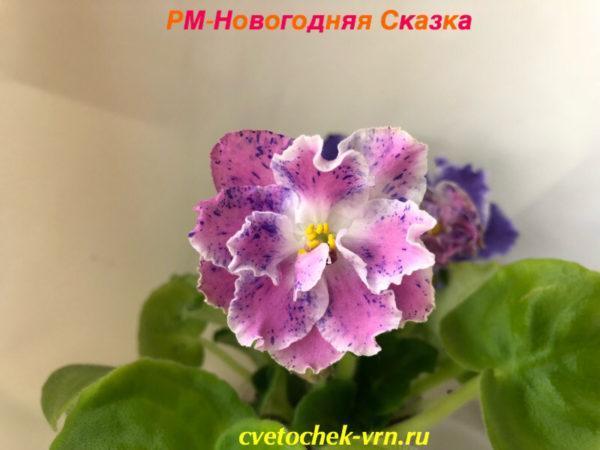 РМ-Новогодняя Сказка (Н.Скорнякова)