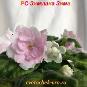 РС-Зимушка Зима