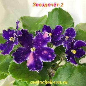 СМ-Звездочёт-2 (К.Морев)