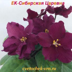 ЕК-Сибирская Царевна
