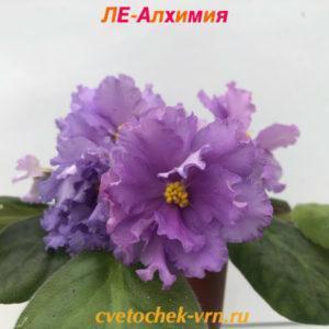ЛЕ-Алхимия