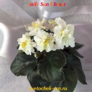 Jolly Sun Chaser (H.Pittman) полумини