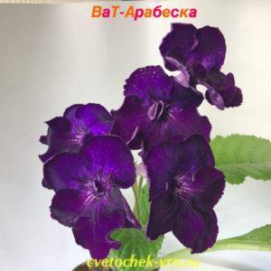 ВаТ-Арабеска (Т.Валькова)