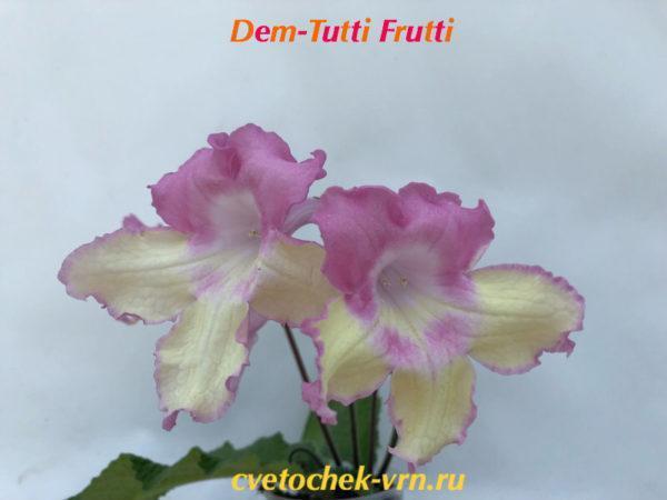 Dem-Tutti Frutti