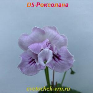 DS-Роксолана