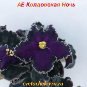 АЕ-Колдовская Ночь (Архипов)