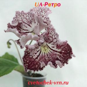 UA-Ретро