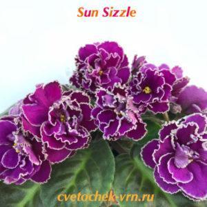 Sun Sizzle (Sorano)