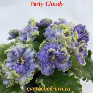 Party Cloudy (Boone)