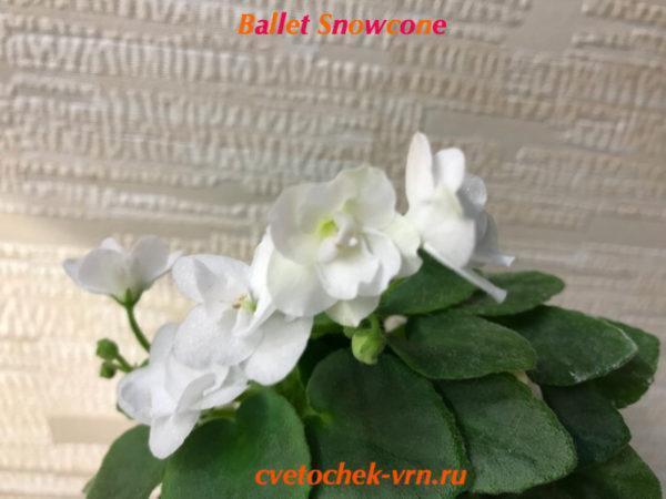 Ballet Snowcone (Fischer) мини