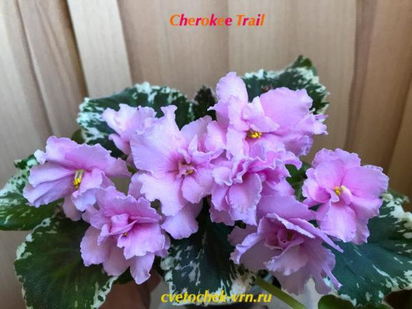Cherokee Trail (L.Ray)