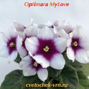 Optimara MyLove (R.Holtkamp)
