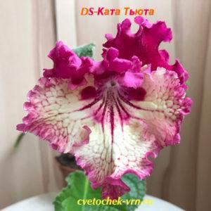 DS-Ката-Тьюта ,755