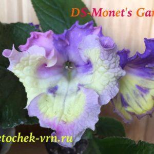 DS-Monet's Garden