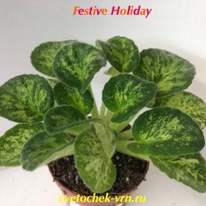 Festive Holiday (S.Sorano)