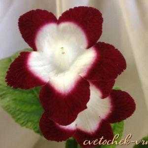 Fleischle Roulette Cherry (Fleischle)