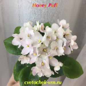 Honey Puff (H.Pittman)