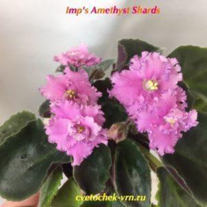 Imp's Amethyst Shards (J.Jackson)