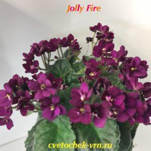 Jolly Fire (H.Pittman) полумини