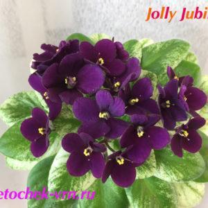 Jolly Jubilee (H. Pittman) мини