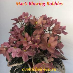 Mac's Blowing Bubbles (G.McDonald)