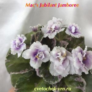 Mac's Jubilant Jamboree (G.McDonald)