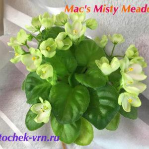 Mac's Misty Meadow (G.McDonald)