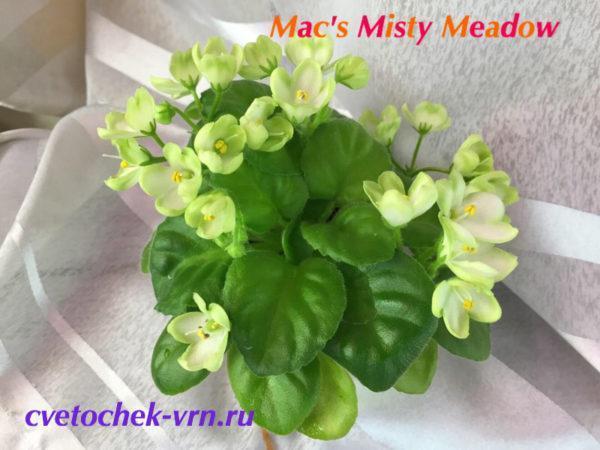 Mac's Misty Meadow (G.McDonald)