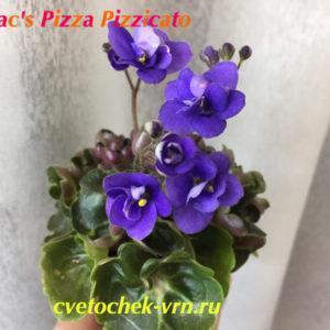 Mac's Pizza Pizzicato (G. McDonald) полумини
