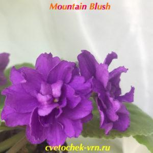 Mountain Blush (Sorano)