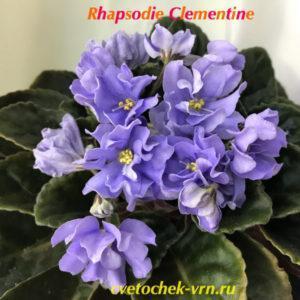 Rhapsodie Clementine (Holtkamp)