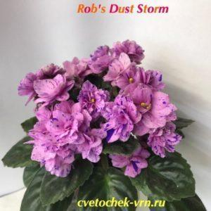 Rob's Dust Storm (R. Robinson)