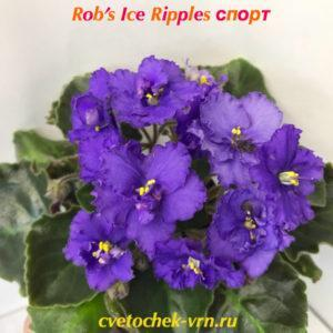 Rob's Ice Ripples (R.Robinson) спорт