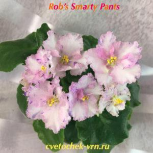 Rob`s Smarty Pant`s (R.Robinson)