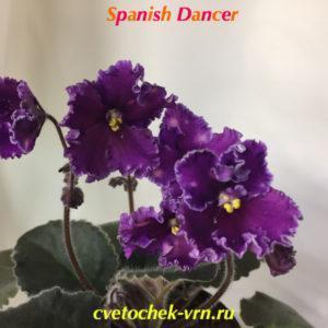 Spanish Dancer (Sorano)