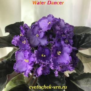 Waterdancer (LLG P.Sorano)