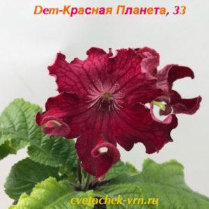 Dem-Красная Планета, 33
