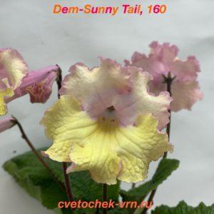 Dem-Sunny Tail, 160